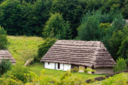 rural log-house in the forest Stock Photo - 3916663