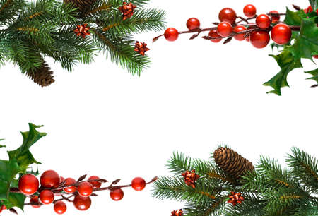 border from Christmas branches of fir-tree and european holly  photo