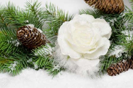 snowbound: snow-bound rose in christmas tree