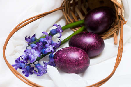 Easter eggs with spring flowers in a basket  photo