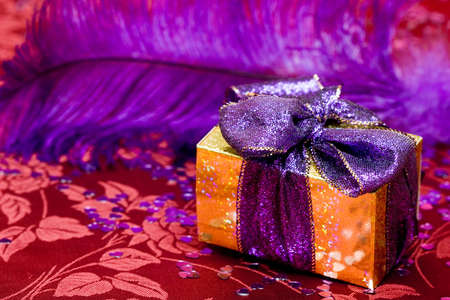 gift box with violet feather  photo