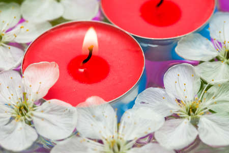 Candle with spring flowers in water photo