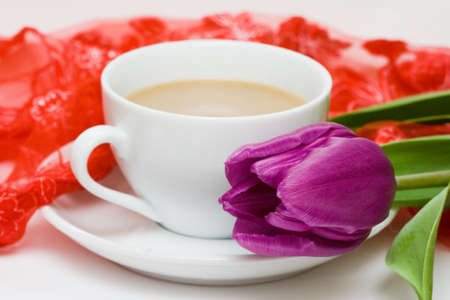 white cup of coffee with violet tulip  photo