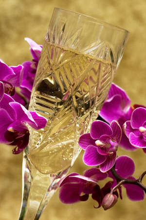 glass with champagne and orchid Stock Photo - 7928789