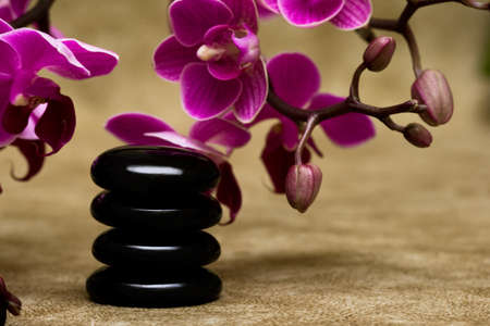 Spa essentials (pyramid of stones with purple orchids) photo