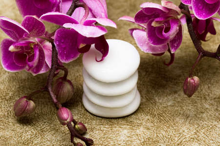 stone wash: Spa essentials (pyramid of stones with purple orchids)