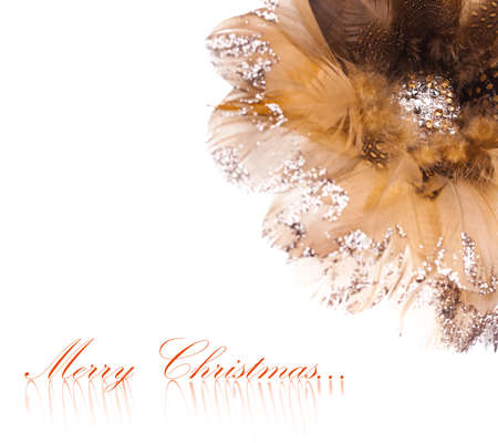 Christmas flower poinsettia made of feathers and rhinestones photo
