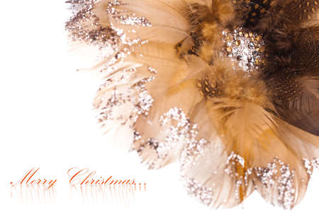 rhinestones: Christmas flower poinsettia made of feathers and rhinestones