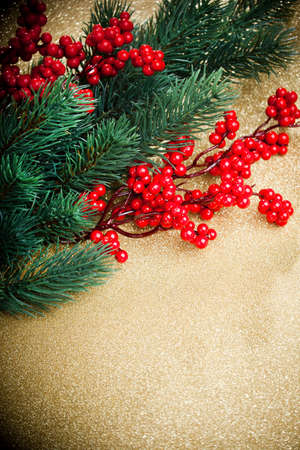 european holly and fir-tree on golden background, shallow DOF  photo