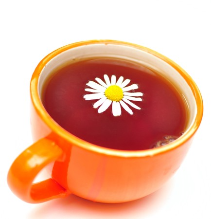 red cup of herbal tea and camomile flowers  photo
