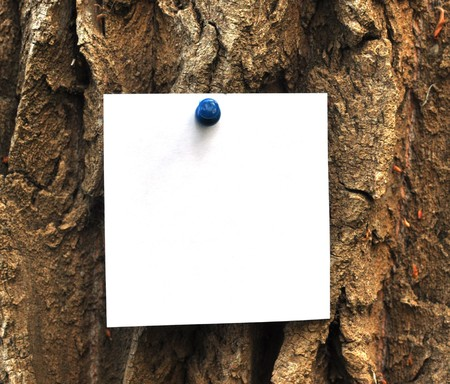 paper attached to krone of a tree, may be used as background Stock Photo - 7594771
