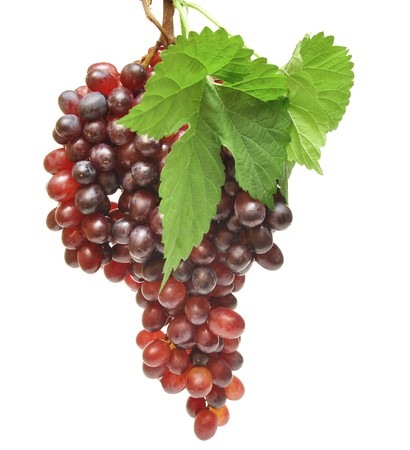 red grapes and leaf isolated on white background photo