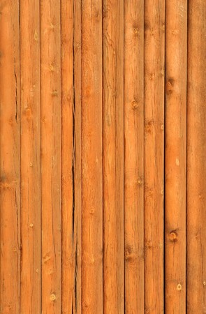 paling: wooden paling from the sharp raw logs Stock Photo