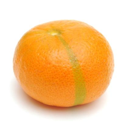 Mandarin isolated on white background Stock Photo - 9089874
