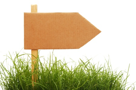 cardboard sign with grass isolated on a white background photo