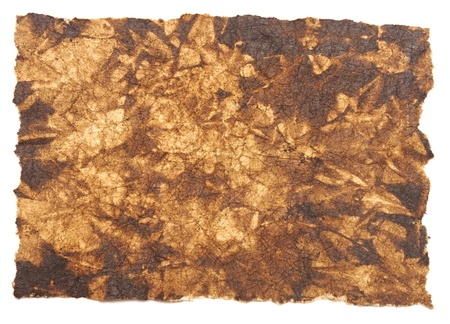 Old rough antique parchment paper texture background isolated on white photo