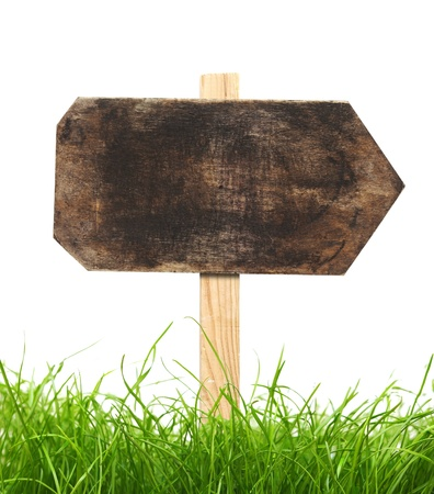 road sign with green grass isolated on a white background  photo