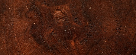 closeup dark wood background photo