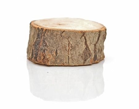 Tree stump isolated on white background photo