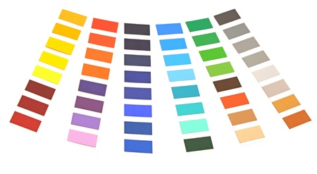 color palette on white background photo