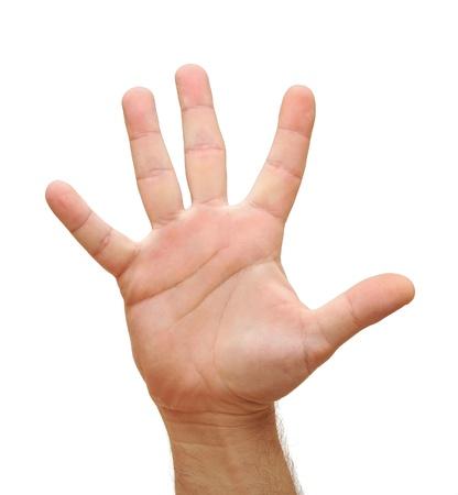 manos abiertas: Por símbolo que significa cinco en el fondo blanco