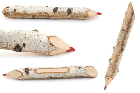 red pencils collection made from tree branches  photo