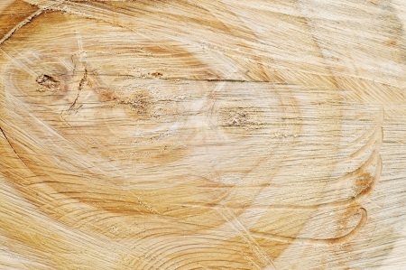 slice of wood timber natural background  photo