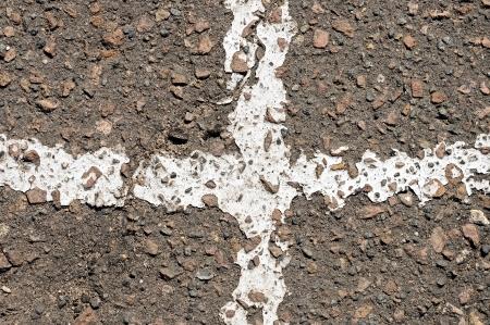 white Line on asphalt photo