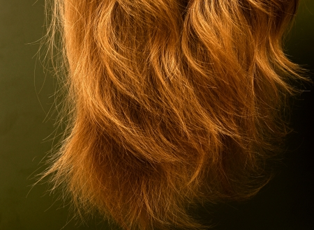 capelli biondi close-up photo