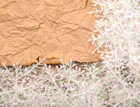 Christmas background. blank old paper sheet with snowflakes photo