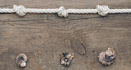 rope and shells on weathered wood background photo