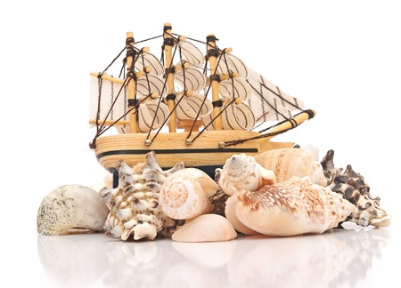 Sailing vessel and sea shells on white background photo