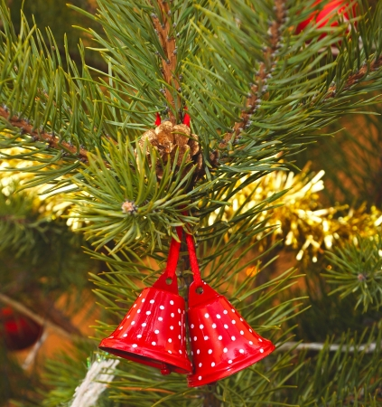 Christmas bells with pine twigs Stock Photo - 17023975