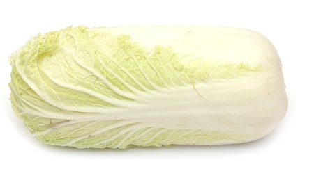 Chinese cabbage  Stock Photo - 18492949