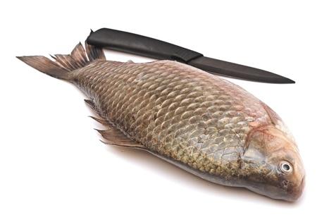 Crucian carp and knife isolated on white background Stock Photo - 19712887