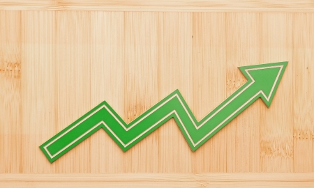 Growth graph on wooden wall photo