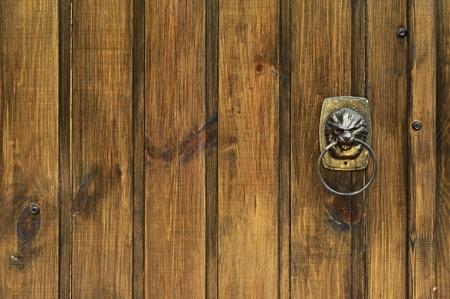 nose ring: lion - door knocker