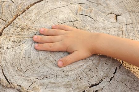eternal life: Children hand