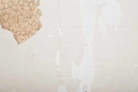 putty knives: Hand removing wallpaper from wall  Stock Photo