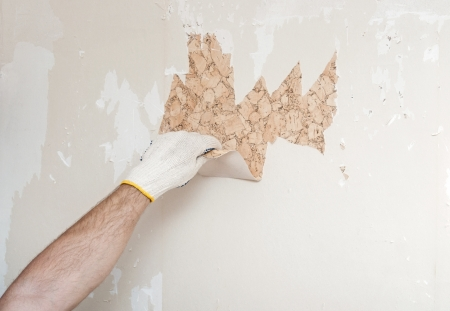 Hand removing wallpaper from wall Stock Photo - 24332432