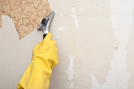 Hand removing wallpaper from wall  Stock Photo - 24332457