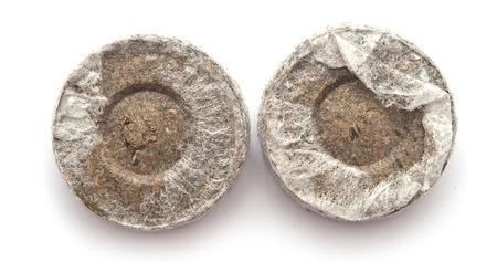 turba: Tabletas de turba para las pl�ntulas