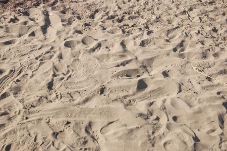 adult footprint: Footprints in sand.