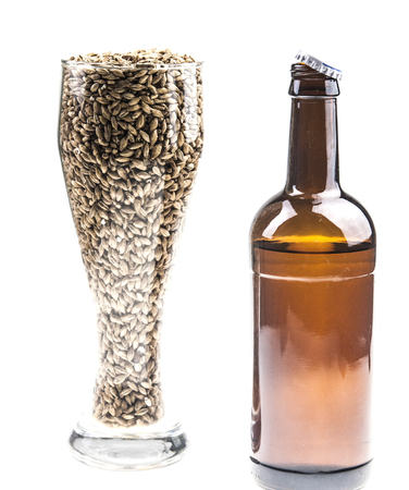 brewery: bottle of beer with and glass full of barley seeds isolated on a white background.