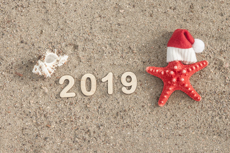 Starfish in Santa Claus hat and seashells on a summer beach. Merry Christmas. Stock Photo