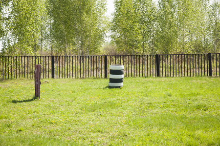Pile of old car tires in the field, tree line background Stockfoto
