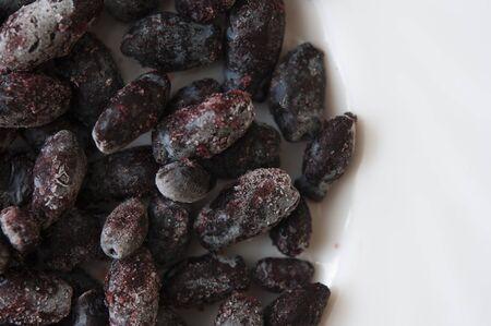Frozen honeysuckle berries covered with hoarfrost