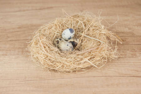 nest with quail eggs on a wooden kitchen table. Easter holiday. Space place to paste text, title