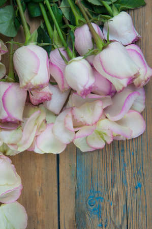 Pink roses on wood background. Mothers day roses, Bouquet of pink roses, Floral background image with copy space for text