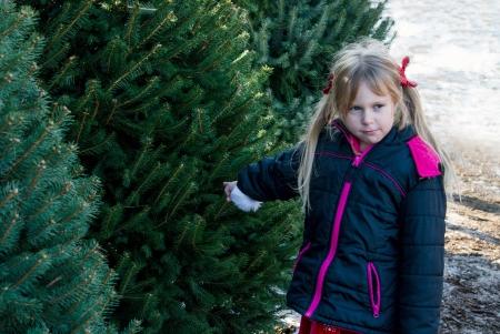 decide: ni�a decide que quiere este �rbol de navidad Foto de archivo